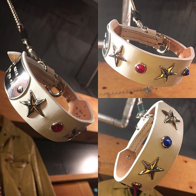 ☆エルビスのNEW・COLLAR☆・・・#original #leather #accessories #dogcollar #bangle #bracelet #belt #dogtag #star #studs #handmade #kagoshima #japan #dog #dogs #dogstagram #instadog #poodle #maltese #bichonfrise #犬 #首輪 #迷子札 #星 #プードル #マルチーズ #ビションフリーゼ #elvis・・・・・☆白い毛に白い首輪は、目立たないですが、スタッズやドッグタグがアクセントになって、こちらの首輪も好評です☆