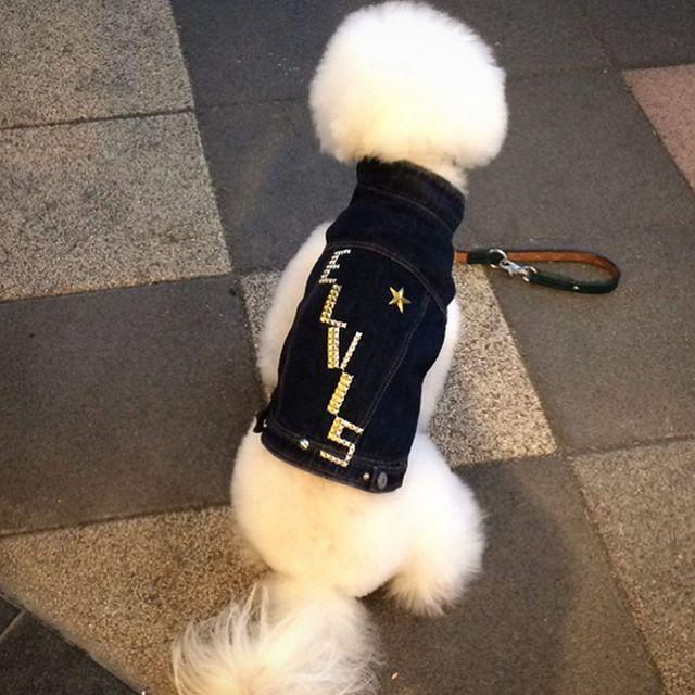 ☆ELVIS☆・・・・・☆本日も営業中です☆・・・・・☆名前☆・☆イニシャル☆・など・☆スタッズ☆カスタム☆・出来ますよ。・・・#original #leather #accessories #wristband #dogcollar #belt #dogleash #necklace #keyholder #dogtag #studs #spangle #handmade #kagoshima #rock #cutie #fashion #dog #dogs #bichonfrise #犬 #首輪 #リストバンド #ベルト #リード #キーホルダー #アクセサリー #スタッズ #鹿児島 #ビションフリーゼ
