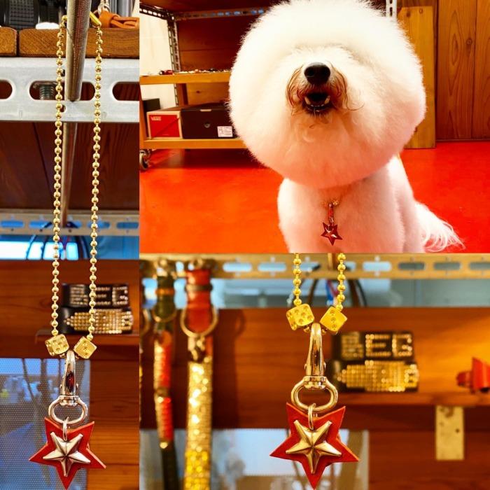 ☆スターチャーム☆・・・☆ネックレス☆・・・☆サイコロ☆・・・☆カスタム☆・・・☆ボールチェーンなのでお好みの長さにカット出来ますよ☆・#original #leather #accessories #dogcollar #dogleash #dogtag #ballchain #dice #necklace #star #spangle #studs #handmade #kagoshima #dog #dogs #dogstagram #instadog #bichonfrise #bichon #dogsofinstagram #doglovers #犬 #ビションフリーゼ #首輪 #星 #ボールチェーン #サイコロ #ネックレス #鹿児島・・・☆今週も日曜日のみの営業になります☆