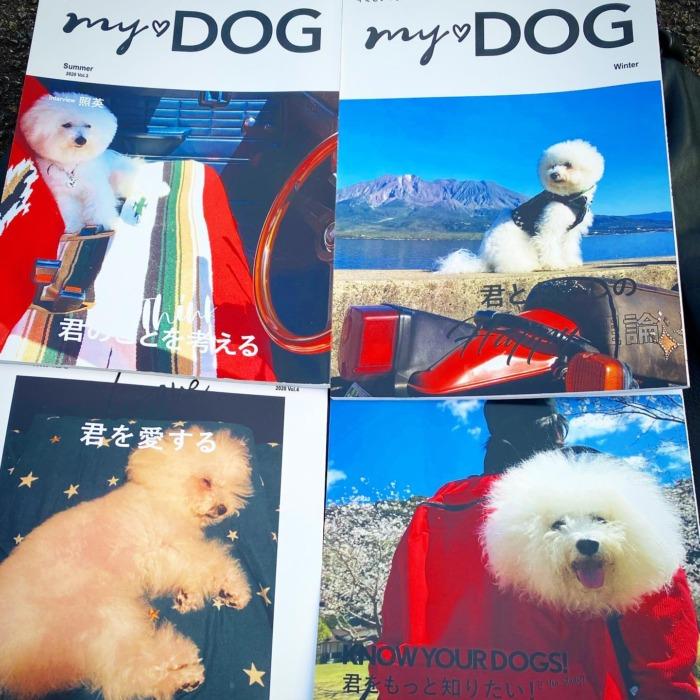 ☆MY☆DOG☆ ・・・・・☆春・夏・秋・冬号☆・☆お気に入りの写真を雑誌に出来る企画☆・☆面白かったです☆・・・・・#original #leather #accessories #dogcollar #dogleash #dogtag #necklace #keyholder #bracelet #belt #wallet #studs #handmade #kagoshima #dog #dogstagram #instadog #poodle #maltese #bichonfrise #peco #pecoいぬ部 #mydog #犬 #首輪 #アクセサリー #プードル #マルチーズ #ビションフリーゼ #鹿児島・・・☆今週も日曜日のみの営業になります☆